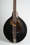 Gibson  K-2 Carved Top Mandocello  (1911)
